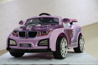 RiVeRtoys BMW HL 518